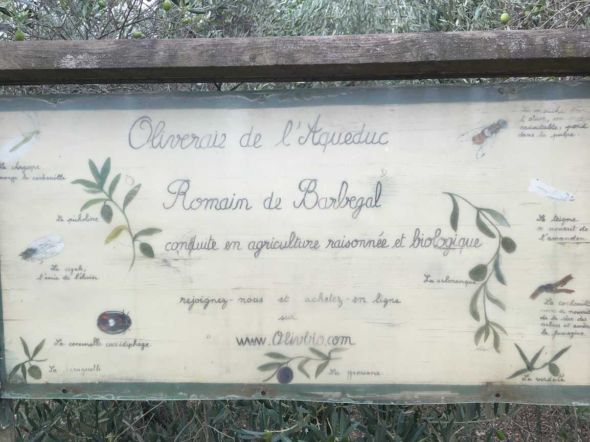 reconnaissane rando Fontvieille (8)